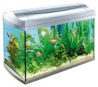 Tetra White Aqua Art Aquarium 60 Litres